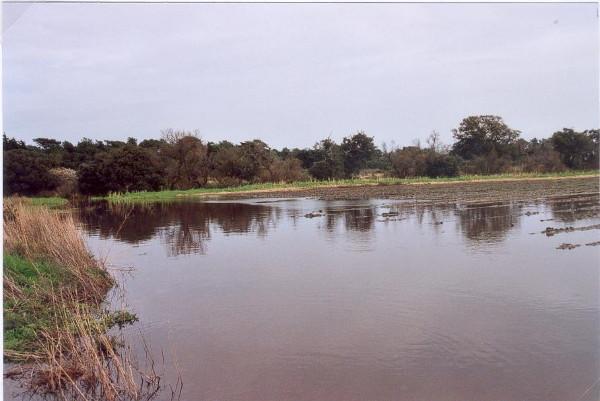 inondables-patouillards-iii-07.jpg