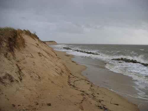 dune-autumn-2004.jpg