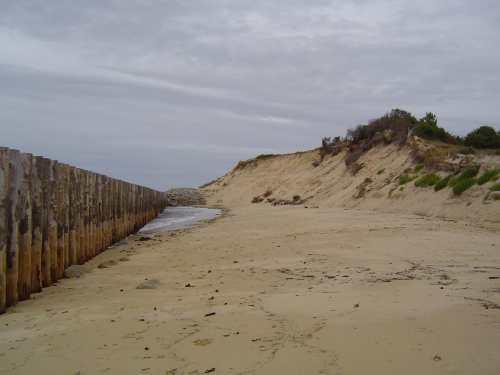Ganivelles 20/8/2009 (nord de la plage - 3)