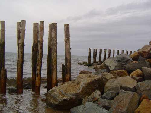 Ganivelles 20/8/2009 (nord de la plage)
