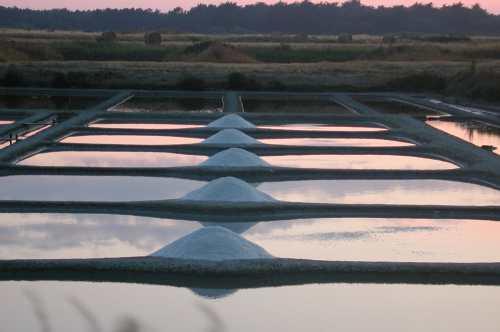marais fin août 2009