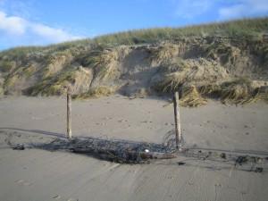 recul de dune à Luzeronde